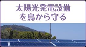 太陽光発電設備の鳥から守る