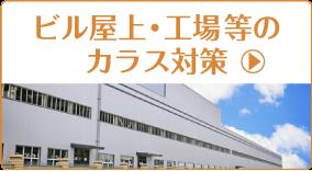 ビル屋上・工場等のカラス対策